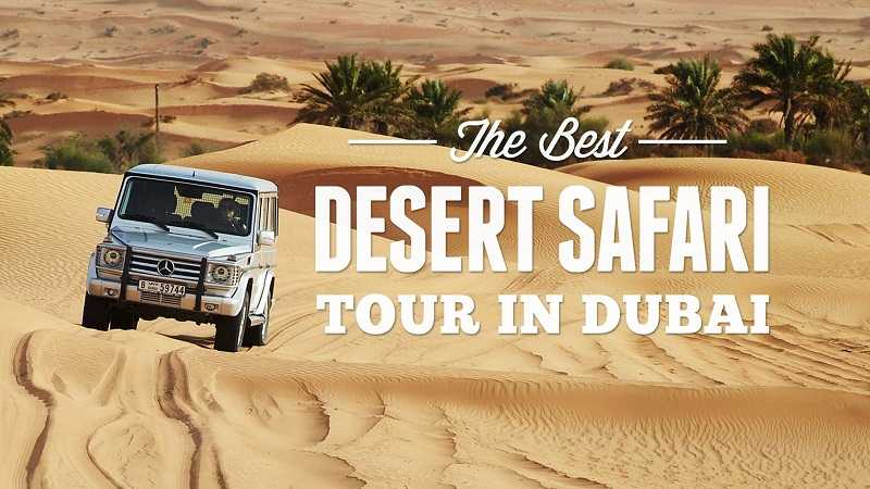 Everything You Should Know About The Desert Safari Dubai
