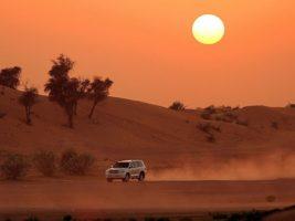 Evening desert safari dubai